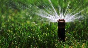 Lawn Sprinkler Services Kingsville