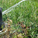 Lawn Sprinkler System Failures