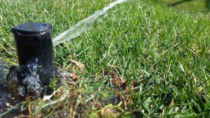 Lawn Sprinkler Repair Services Windsor